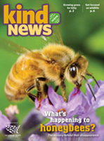 Kind News May June 2012